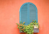 Window with flowers. — Stock Photo