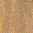 Texture of old tree rind — Stock Photo #36476329