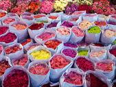Colorful bouquet — Foto de Stock