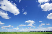 Sky, meadow and houses in the distance — Stock Photo