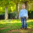 The boy in the wood — Stock Photo #12044253