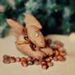 Surprise under a fir-tree — Stock Photo