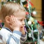 Kid and fir-tree — Stock Photo