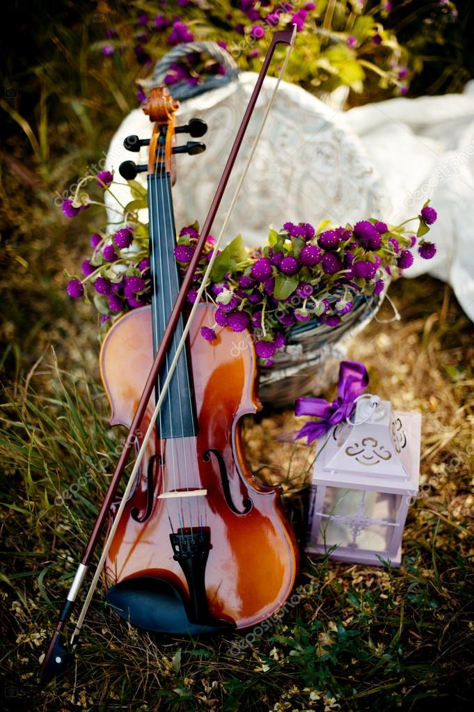 On grass with wildflowers is the violin and the lamp — Stock Photo #12800497
