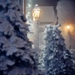 Tree at night in the snow — Stock Photo #13609414