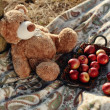 Toy bear — Stock Photo #14790605