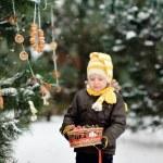 Winter Walk — Stock Photo #17697825