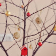 Miracle a tree — Stock Photo #18130869