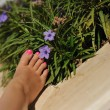 Female foot — Stock Photo