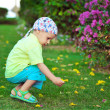 Child in the meadow — Stock Photo #19360447