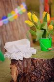 Yellow tulips — ストック写真