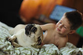 Boy and pug — Stock Photo