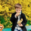 Boy and birds — Stock Photo