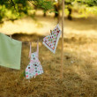 Laundry on rope — Stock Photo #26565595