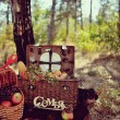 Still life of autumn picnic — Stock Photo #33934615