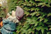 Pajęczyna — Zdjęcie stockowe