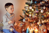Boy and Christmas tree — Stock fotografie