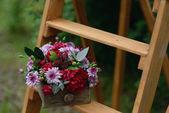 Composizione floreale — Foto Stock