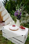пикник в палатке — Стоковое фото