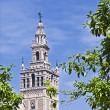 Giralda — Stock Photo #26148169