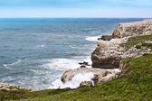 Morze cantabrico, suances (Hiszpania) — Zdjęcie stockowe