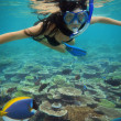 Young woman swimming with fishes on coral reef in blue water — Stock Photo #10706701