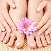 Opieki nad kobieta piękne nogi — Zdjęcie stockowe