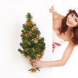 Santa woman with christmas tree peek behind the white blank boar — Stock Photo