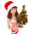 Santa woman with christmas tree. Wide angle  — Stock Photo