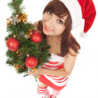Santa woman with christmas tree. Wide angle — Stock Photo #17844211
