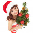 Santa woman with christmas tree. Wide angle — Stock Photo #18048017