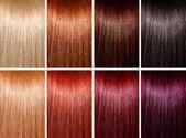Beispiel für verschiedene haarfarben — Stockfoto