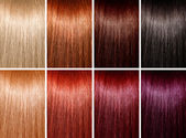 Example of different hair colors — Stock fotografie