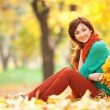 Young pretty woman relaxing in the autumn park — Stock Photo #28038637