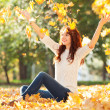 Young pretty woman in the autumn park — Stock Photo #31618037