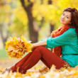 Young pretty woman relaxing in the autumn park — Stock Photo #31618265