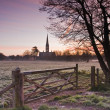 Stock Photo: Salisbury cathedral