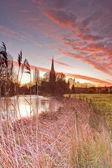 Salisbury cathedral across  meadows — Stock Photo