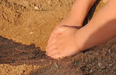 Children's hands in the sand — Stock Photo