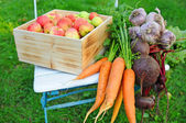 Vegetables and fruits from the garden — Stock Photo