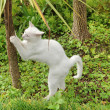 Stock Photo: Cats on nature