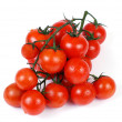 Cherry tomatoes on a branch on a white background — Stock Photo