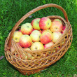 Stock Photo: Ripe fresh apples