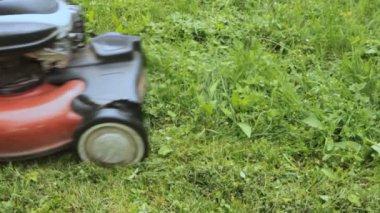 Lawnmower — Stock Video