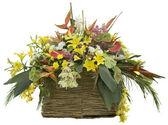 Flores en maceta de caña — Foto de Stock