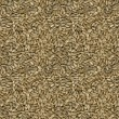 Sunflower Seeds Seamless Texture — Stock Photo