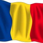 Romanian flag — Stock Vector
