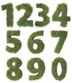 Grass Numbers Cutout — Stock Photo