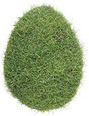 Egg Shape of Grass Turf Cutout — Stock Photo