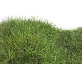 Grass Hill Cutout — Stock Photo